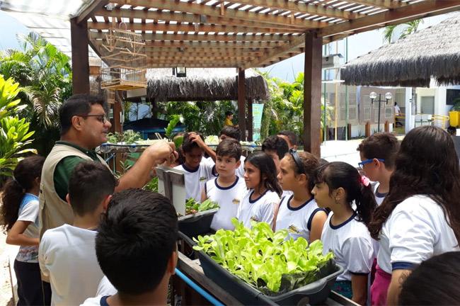 Aula prática no Núcleo de Educação Ambiental com Alunos do 5° ano A