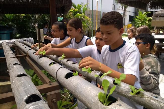 Aula prática no Núcleo de Educação Ambiental para Alunos do 6° ano B