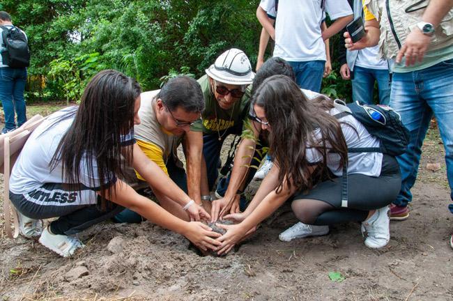 Embrapa e Amadeus promovem plantio e reciclagem na Semana do Meio Ambiente