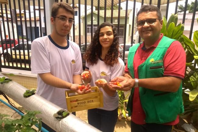 Laboratório de Aquaponia e produção de tomates cereja