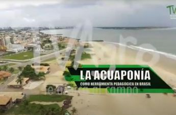A Aquaponia como ferramenta pedagógica no Brasil