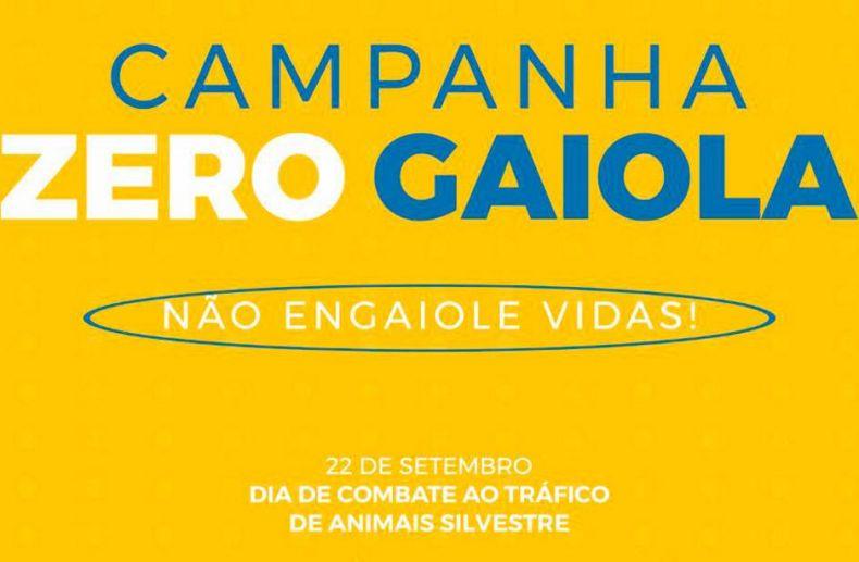 Campanha contra o tráfico de Animais Silvestres - Zero Gaiola