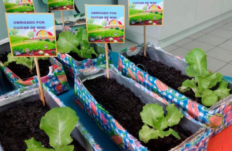 Atividade de Educação Nutricional e Ambiental Horta – Educação Infantil